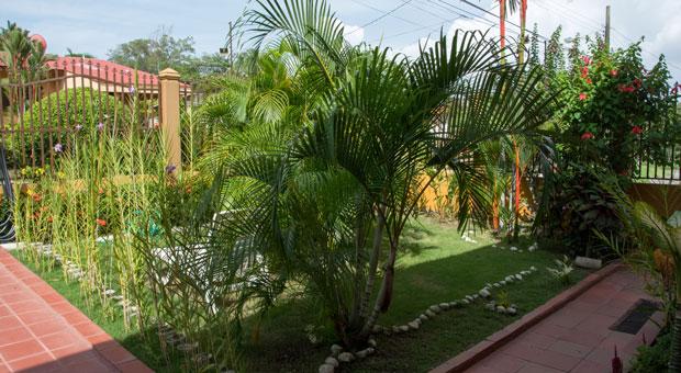 Coconut-Lodge_22